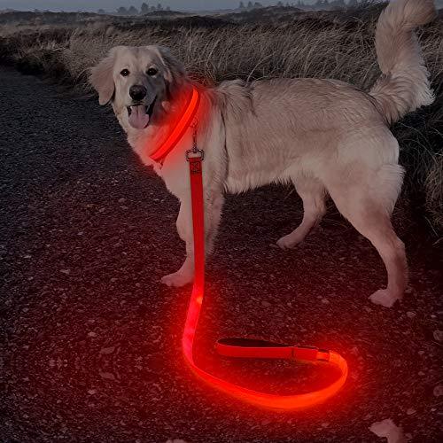 BSEEN Led Hundeleine, USB wiederaufladbar, Nylon, leuchtende Hundeleine, 120 cm, Leuchtend, hohe Sichtbarkeit, Sicherheit & gesehen für große Hunde (rot)