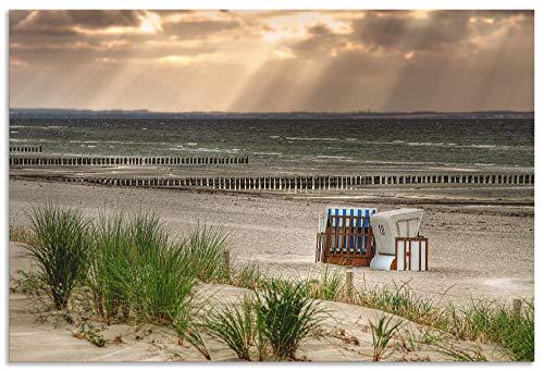 Artland Wandbild Alu für Innen & Outdoor Metall Bild 30x20 cm Landschaften Strand Fotografie Creme Schwarzer Busch Strand auf Insel Poel T9ER