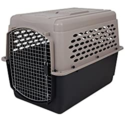 best extra large plastic dog crate