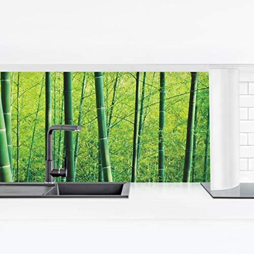 Bilderwelten Crédence adhésive Résistant à l'eau - Bamboo Forest Premium 90 x 315 cm