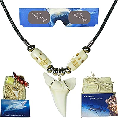 Real Hawaiian Shark Tooth Necklace - Gift Box for Kids, Boys, Girls, Men, Women and Surfers - Bundle Features Hawaiian Gift Box, 3D Shark Glasses, Gift Card, Fun Facts Card and Hawaiian Candy (1.25, Lateral Shark Tooth with Black Cord)