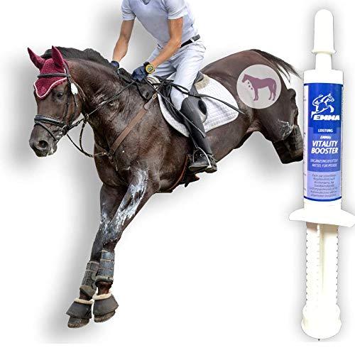 Aminosäuren Paste für Pferde I Amino Booster I Vitamin E Bierhefe I Energy Booster I Aufbaufutter bei Muskelkater I Regeneration der Muskulatur Leistung I Muskelaufbau I Salze Magnesium Pferd 30 ml