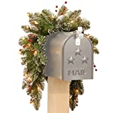 National Tree 3 Foot Glittery Mountain Spruce Mailbox Swag with White Tipped Cones, Red Berries and 35 Battery Operated Warm White LED Lights with Timer (GLM1-300-3M-B1)