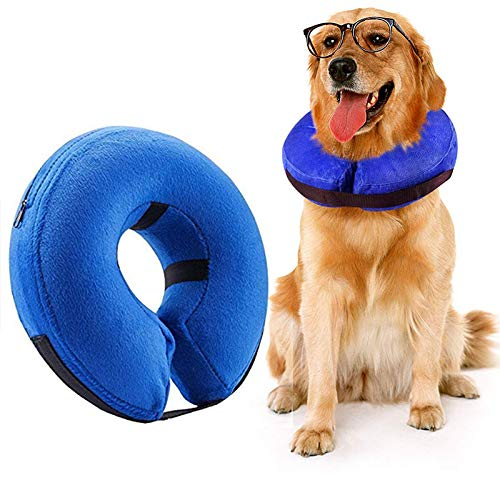 Best Pet Recovery Collar for Large Dogs