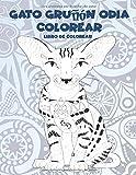 Gato gruñón Odia colorear - Libro de colorear