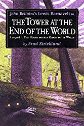 Cover of The Tower at the End of the World