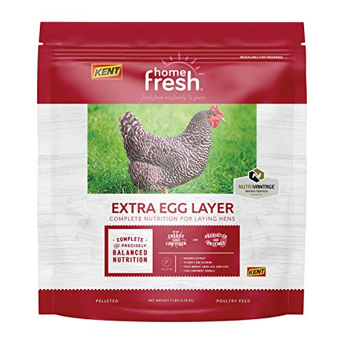 Kent Poultry Extra Egg Layer Chicken Pellet 7lb