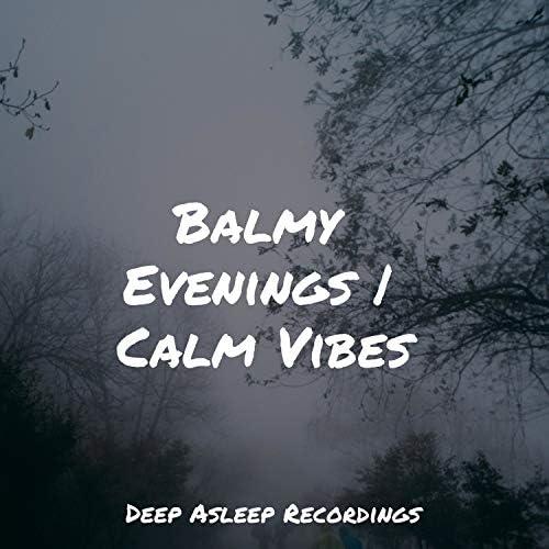 Massage Music, Healing Sounds for Deep Sleep and Relaxation & Zen