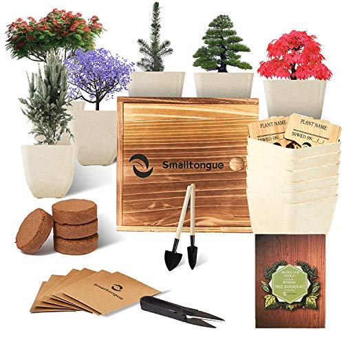 Smalltongue Indoor Bonsai Tree Garden Kit, with 6 Pots and All Supplies You Need, Indoor Bonsai Tree Garden Starter Kit for Beginner, Adult, Kitchen, Balcony, Window Sill