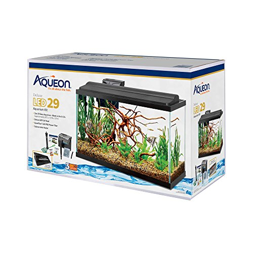 Best 29-30 Gallon Fish Tanks And Aquarium Kits | Review
