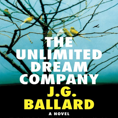 The Unlimited Dream Company audiobook cover art
