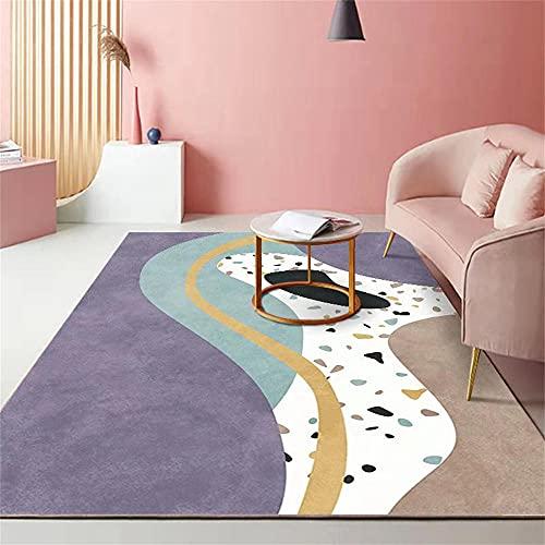 Alfombra Exterior Alfombras Comedor Alfombra de niña Diseño de Terciopelo Corto, habitación para niños Matra de Arrastre bilis Duradera Decoracion Comedor 120x160cm