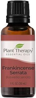 Plant Therapy Frankincense Serrata Essential Oil 100% Pure, Undiluted, Natural Aromatherapy, Therapeutic Grade 30 mL (1 oz)