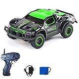 DAYINGTAO Pequeño coche teledirigido, Palm Rc, vehículo modelo todo terreno, con batería recargable y luces LED coche de juguete para regalo de niño 5.7 '* 3'* 2'