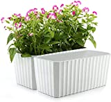 T4U Plastic Rectangular Self Watering Window Box White Set of 2, Modern Decorative Planter Pot for All House Plants, Flowers, Herbs, African Violets, Succulents