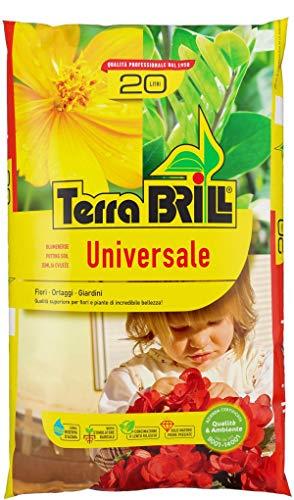 Brill - TerraBrill Universale - Terreau avec réserve d'eau - Sac de 20 litres