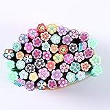 frcolor 50pcs 3d nail art adesivi manicure Fimo Cannes Cannes Bastoncini per DIY Nail Decorazione 5x 50mm (stile di fiore)