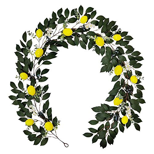 æ—  6.5ft Long Artificial Silver Dollar Eucalyptus Leaves Garland,Hanging Eucalyptus Vines Garland with Lemon Blueberry,Flower,Fake Greenery Vines Swag for Wedding Backdrop Arch Wall Decor