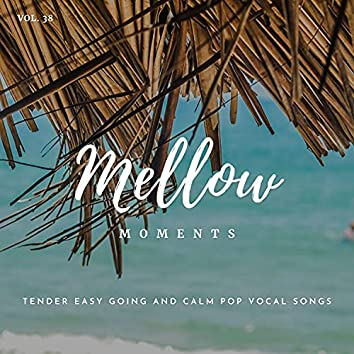 Mellow Moments - Tender Easy Going And Calm Pop Vocal Songs, Vol. 38