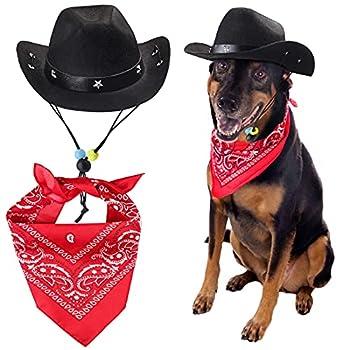 dog cowboy hat