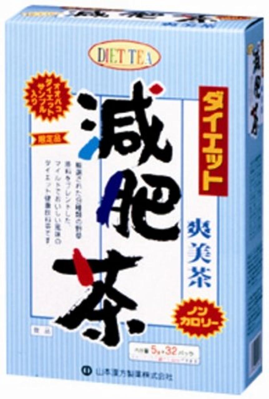 無法者分布苦山本漢方製薬 ダイエット減肥茶680 5gX32H