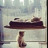 Chat Fenêtre Montée Fenêtre Chat Kitty PerchStrong et Durable Cat Hamac