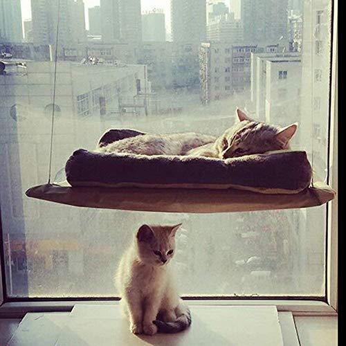Hamaca para gato, ideal para colocar en la ventana, con un diseño duradero