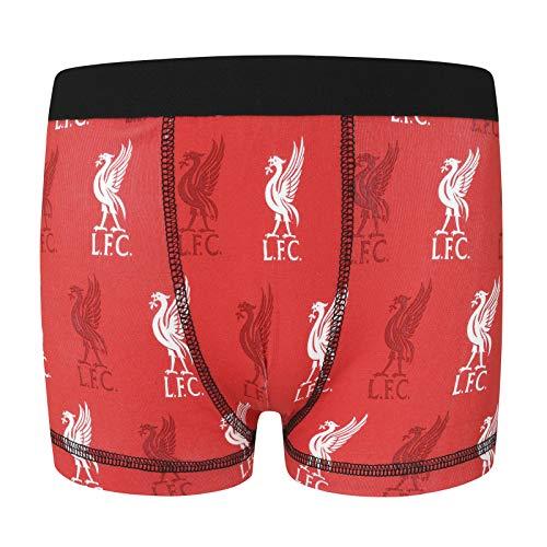 Liverpool FC - Jungen Boxershorts - Offizielles Merchandise - Geschenk für Fußballfans - 1 Paar - Rot - 11-12 Jahre