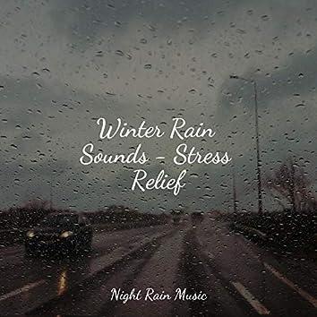 Winter Rain Sounds - Stress Relief