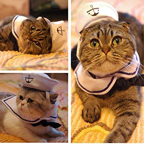 Broadroot Disfraz de Gato Traje de Marinero Sombrero de Cachorro Gatito de...