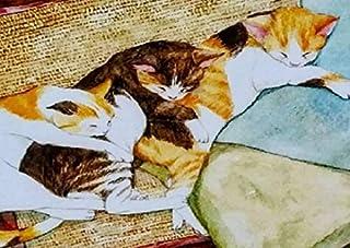 B4 猫団子 三つの物語 塚本禎子のダイヤモンドアート(KIC-tei72-1-225)/全面貼り付け(257mm*364mm)/四角型(Square)/ビーズアート/モザイクアート