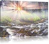 Nebeldickicht im Wald, Format: 80x60 auf Leinwand, XXL