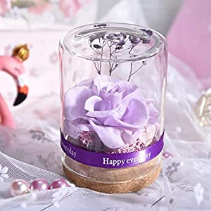 Artificial and Dried Flower Dried Flowers Artificial Flowers Valentines Day Rose Gift Home Decor Rose in Glass Birthday Wedding (Color: Hibiscus Purple )