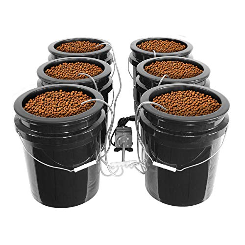 HTG Supply Bubble Brothers DWC Hydroponic System - 6-Site XL