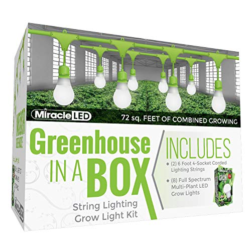 Miracle LED Greenhouse in a Box Grow Kit for Indoor Plants - Includes 4 Full Spectrum Daylight Ultra Grow 150W Grow Light Bulbs & One 4-Socket Corded Light Fixture (2-Pack - 2 Strings, 8 Bulbs)