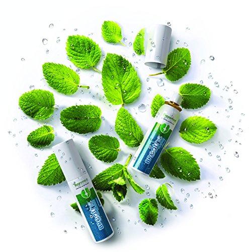 LB Breathe Herbal Mouth Freshener Spray (Peppermint)- Pack of 2