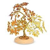 Serafino Echter baltischer Bernstein, Baum des Glücks, Glücksbaum, in Box, Mehrfarbig, 20 cm