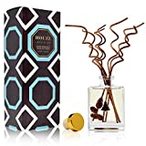 HOUZZ Interior Smoked Birch Reed Diffuser Oil Set – White Birch, Smoked Vanilla, Warm Sandalwood and Musk – Beautiful Display for Your Holiday Decor – Natural Essential Oil Room Scent Infuser Sticks