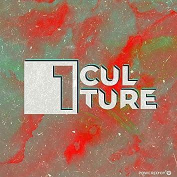VA: 1 CULTURE II