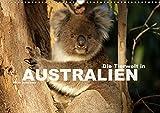 Die Tierwelt in Australien (Wandkalender 2020 DIN A3 quer): Die faszinierende und exotische Tierwelt Australiens in einem Kalender vom Reisefotografen ... (Monatskalender, 14 Seiten ) (CALVENDO Natur) - Peter Schickert