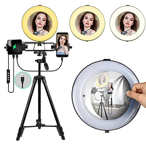 8' Ring Light with Mirror,Dimmable Selfie LED Ring Light for Beauty, Makeup,Live Stream,YouTube...