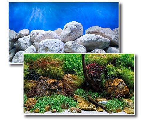 Amtra Deko Fotorückwand Adventure beidseitig Bedruckt 150x60cm 2in1 Rückwandposter Rückwand Folie Aquarien Poster Foto Folien