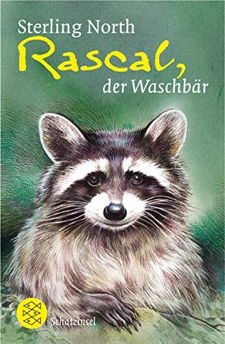 Rascal, der Waschbär (Fischer Schatzinsel)