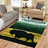 Animal Bison Carpet Living Room Hallway Teenager Bedroom Anti-Slip Area Rugs Kids Play Mat Floor Mat 160X230Cm