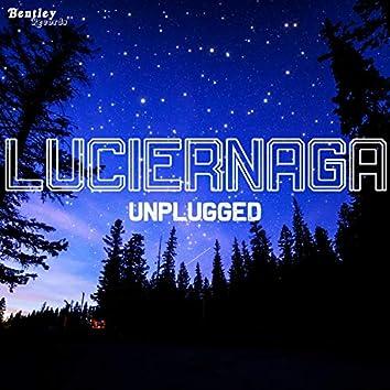 Luciernaga