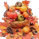 YIZRIO Mini Artificial Pumpkins Autumn Gourds, Maple Leaves, Pine Cones, Acorns...