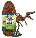 Geoworld Jurassic Eggs - Assembly Set - Spinosaurus