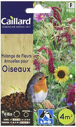Caillard PFCA21517 Graines de Fleurs Annuelles pour Oiseaux 4 m²