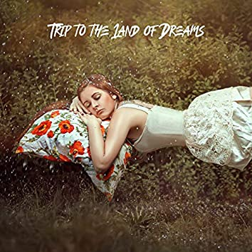 Trip to the Land of Dreams – Calm Your Mind and Have a Good Night with Soothing New Age Sounds