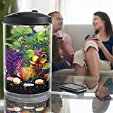 Koller Products 3-Gallon Aquarium with Sleep Sound Machine (Nature Sounds), LED Lighting (7 Color Choices) and Internal Filter